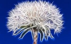 Blüte_vernetzt